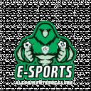 Alecrim F.C. e-sports