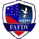 Time Federação Amazonense de Futebol Digital Virtual