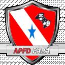 Time Associação Paraense de Futebol Digital