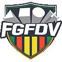 Time Federação Gaucha de Futebol Digital Virtual