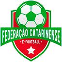 Time Federação Catarinense e-Football